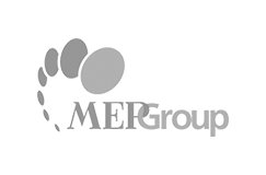 MEPGROUP-trans-gris